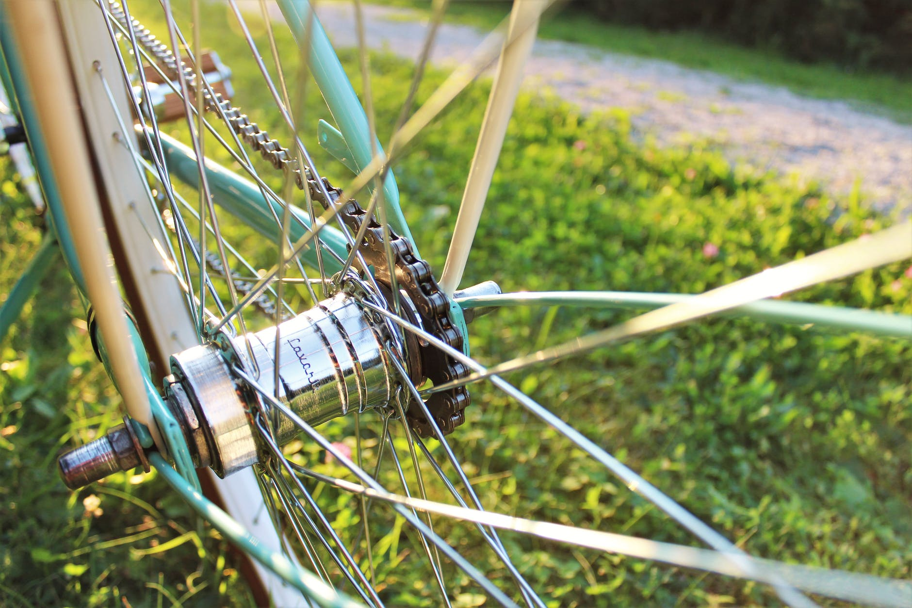Hub and spokes of a bicycle wheel.